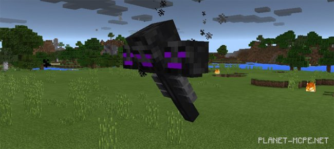 Мод Ender Wither 1.0/0.17.0/0.16.1/0.16.0