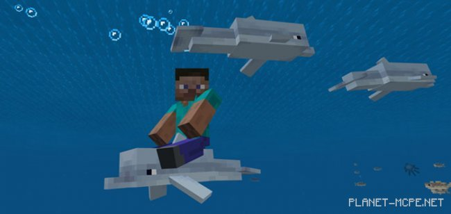 Мод Controllable Rideable Dolphins 1.4