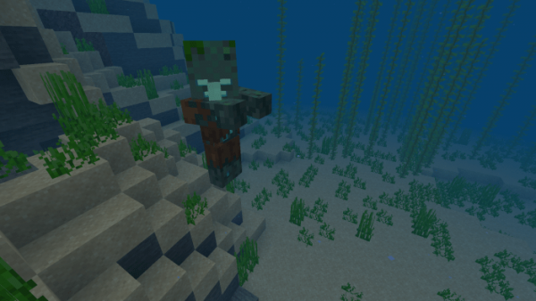 Мод Drowned Villager